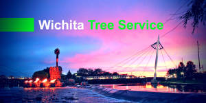 tree service wichita ks